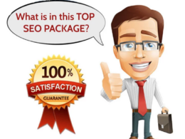 Provide Top Google Ranking With Moz Domains Authority Sites