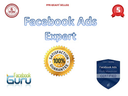 Set up a winning Facebook Ads campaign - Great Deal!