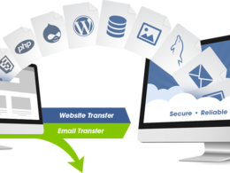 Transfer your website to another hosting account or domain