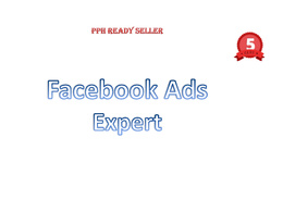 Set up an exceptional Facebook Ads campaign - Great Deal!