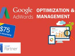 Create & Optimize Your Google Adwords/PPC Campaign