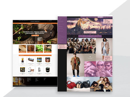Design And Develop An attractive eCommerce/wooCommerce