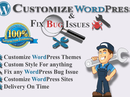 Provide WordPress 1 hour of customization/bug fixing/ support