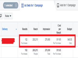 Setup your Facebook Ads campaign with laser targeted audience