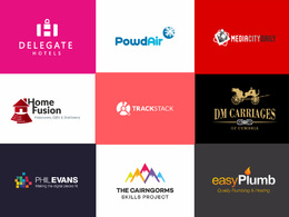 Design a High Quality (Business) logo + Unlimited Revision