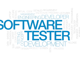 Test your website/application/software and report bugs