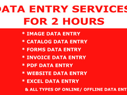 Do Data Entry Job for 2 hours