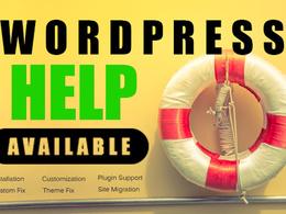 Solve any WordPress problem or do any type of customization