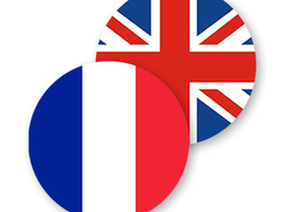 Translate 1000 words per day, English to French