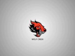 Create Amazing Animated Logo Intro Video