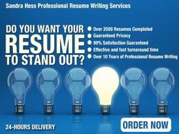Write professional job wining resume/CV in 24 hours