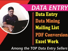 Do expert data entry for 2 hours
