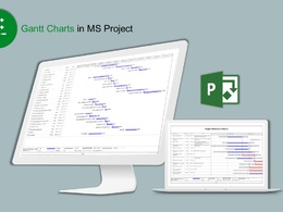 Prepare Gantt Charts and project plans in MS Project