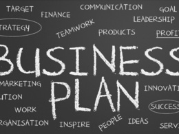 Write a full, bespoke business plan with financials
