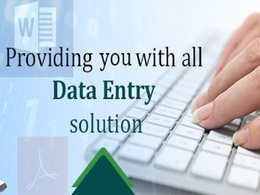 Be your Data Entry assistant for one working day (8 hrs)