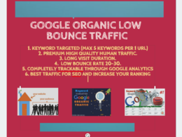 Provide Keyword Targeted Google Organic Traffic with Low Bounce