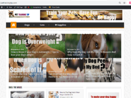 Publish guest post on my DA20 PA26 pet (dog and cat) blog