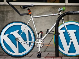 1 hour of WordPress updates, maintenance or customization