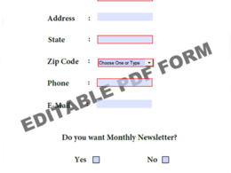 Create Fillable PDF Form (Up to 2 Pages)