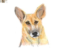 Draw a digital art of your pet