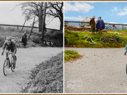 Edit, enhance and colorize your black and white photograph