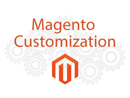 Provide 1 hour customisation on Magento 1 & 2 website / theme
