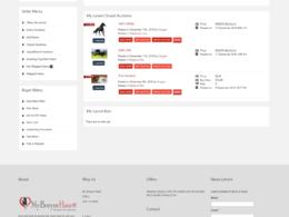 Auction Responsive website