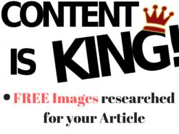 Write original 1000 words SEO Blogs & Articles