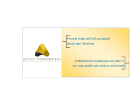 Provide expert Process Mapping/Process Improvement consultation