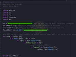 Write  proffessional scripts in python/bash
