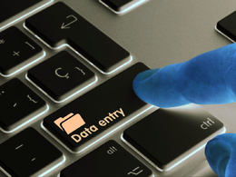 Provide 1 hour VA or Data entry services