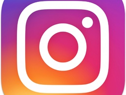 Collate data on 100 Instagram influencers