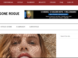 Guest Post on Fashiongonerogue.com - DA73- Fashion Website