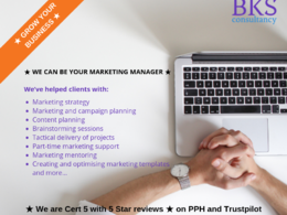 Be your awesome remote Marketing Director/Manager for 1 day p/m