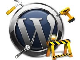 Fix any WordPress Bugs/Issues