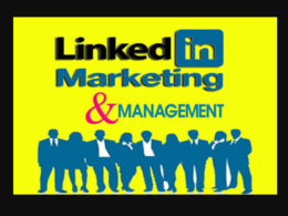 Do 14 days Linkedin Marketing, Management and grow Connections