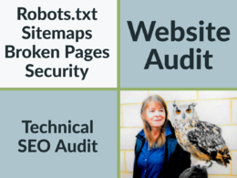 Do a website technical seo audit and report