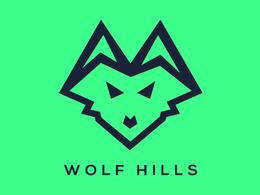 Design Minimalist Logo + 3 concepts + unlimited revisions