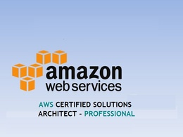 Hire AWS certified solutions architect professional| Hourly Help
