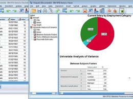 DO SPSS analysis with comprehensive 1500 word counts report