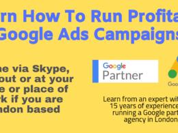 Teach you how to run profitable ads on google