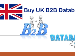 Provide UK B2B database in excel format 40k emails