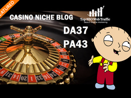 Provide Guest post on Casino niche DA37 blog