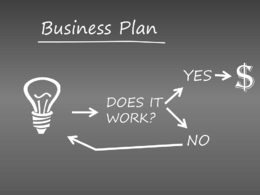 Compelling business plan from an MBA with extensive experience
