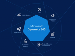 Provide you Microsoft Dynamics 365 Consultant