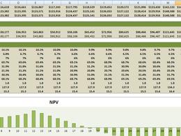 Develop a bespoke Excel-based application - 100% PPH Rating!