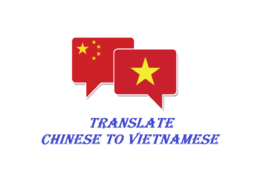 Translate Chinese to Vietnamese 500 Words Vietnamese Chinese