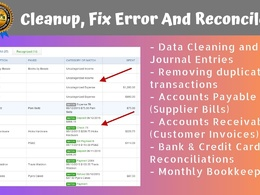 Professionally Cleanup, Fix Error And Reconcile
