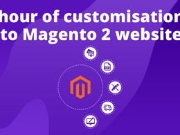 1 hour of customisation to Magento 2 website