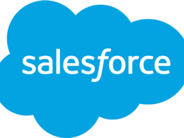 Offer 1 hour support for Salesforce bug fix and development